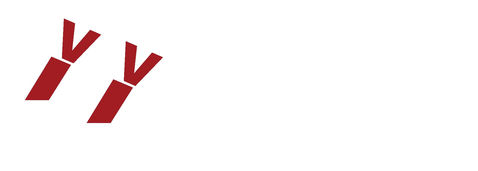 Volleybalvereniging Trynwâlden